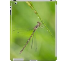 Wing Ding iPad Case/Skin
