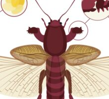 Infographic: European Mole Cricket Sticker