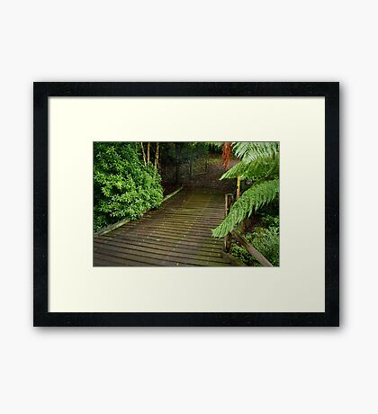 Wooden Bridge, Stringers Creek,Walhalla Framed Print