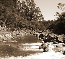 Old style Karangahaki Gorge by Whole Shot  Photography