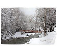 bridge over frigid water Poster