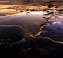 Rock Pool Lights by Michael Treloar