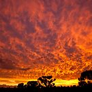Fire in The Sky by Neil