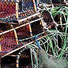 Lobster Pots At Scarborough UK by patjila