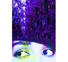 Eyes in the Forest Photographic Print