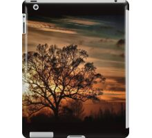 What A Difference A Day Makes iPad Case/Skin