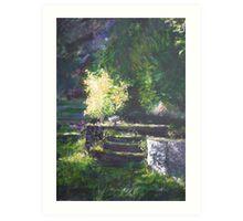 A quiet corner in the garden Art Print