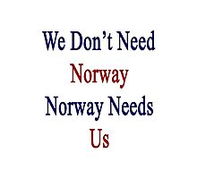 We Don't Need Norway Norway Needs Us  Photographic Print