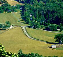 Rolling Hills     ^ by ctheworld