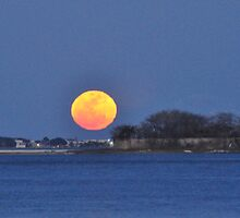 Moon Rise Over Castle Pinckney, Charleston, SC, USA by James J. Ravenel, III
