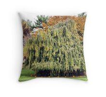 Pumpkin Willow Throw Pillow