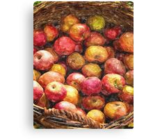 Apple Basket 1 Canvas Print
