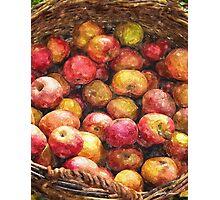 Apple Basket 1 Photographic Print