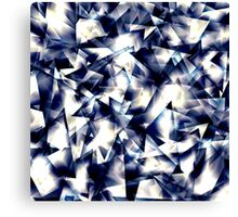 Shining in Winter Canvas Print