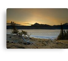 Abraham Lake Canvas Print