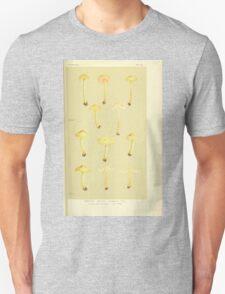 Illustrations of British Fungi by Mordecai Cubitt Cook 1891 V3 0307 AGARICUS  NOLANEA  ICTERINUS Unisex T-Shirt