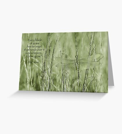Grow, grow . . . Greeting Card