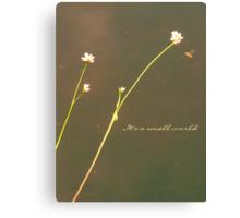 small world Canvas Print