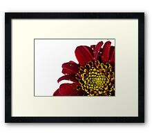 Rain On Me Framed Print