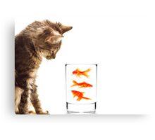 A kittens curiosity Canvas Print