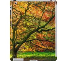 Maple Tree in Autumn iPad Case/Skin