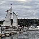 Boothbay Harbors a Storm by Monnie Ryan