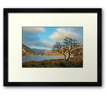 Llyn Gwynant and Tree Framed Print