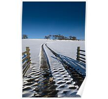 Tracks in Snow Poster