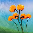 Oriental Poppies  by LudaNayvelt