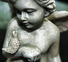 Cherub With Bird by AuntDot