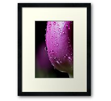 Rained On Framed Print