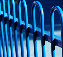 The Blue Fence by Eve Parry