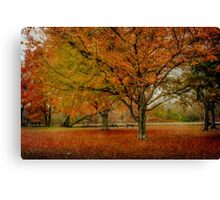 Newengland Colorful November. Canvas Print