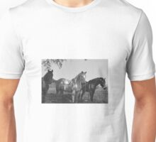 Horses black and white  Unisex T-Shirt