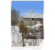 Premium Bird House View Poster