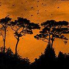 Orange Sky Rising by Susan Werby