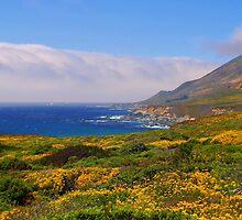 """""""California Dreaming"""" by Gail Jones"""