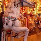 Carousel  by Vicki Spindler (VHS Photography)