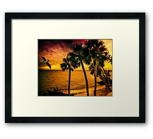 New Year in Florida Framed Print