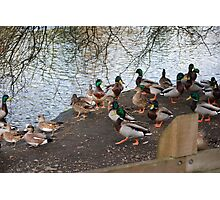 Ducks Unlimited Convention? Photographic Print