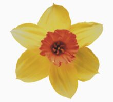 DAFFODIL FLOWER Kids Clothes