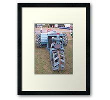 Samson Framed Print