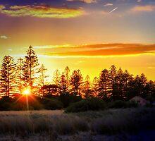 Morning Sunrise by JaninesWorld