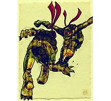 Teenage Mutant Ninja Turtles Artwork Photographic Print