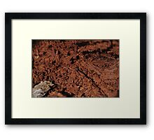 Red Decay Framed Print