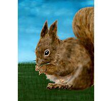 Squirrel painting Photographic Print