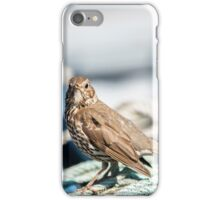 Thrush on a Boat iPhone Case/Skin