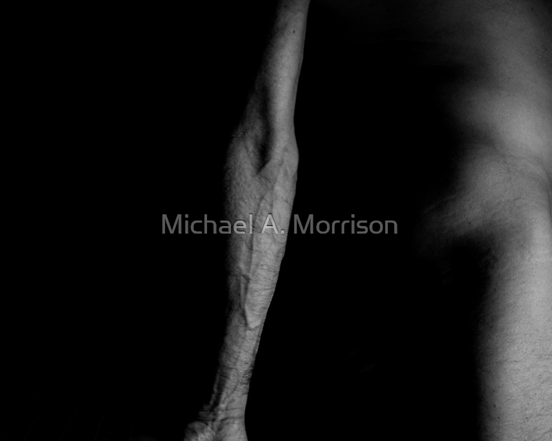 i fell from a great height #11 (flesh & blood)  by Michael A. Morrison