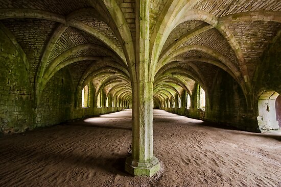 Cellarium Fountains Abbey by Ray Clarke