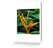 golden yellow torch Greeting Card